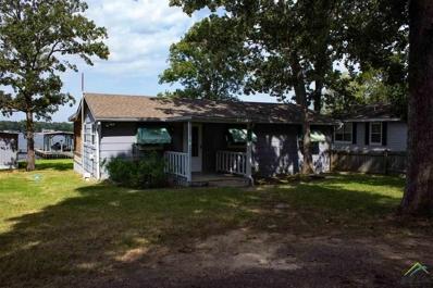 671 Callendar Lake, Murchison, TX 75778 - #: 10111860