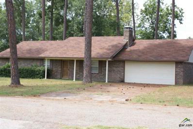803 Pine Grove Circle, Quitman, TX 75783 - #: 10112172