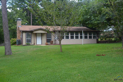 435 Lakeview Dr, Hideaway, TX 75771 - #: 10112347