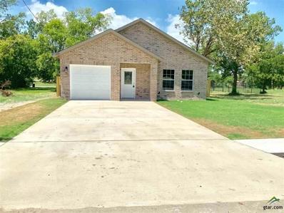 1507 King Street, Greenville, TX 75401 - #: 10112397