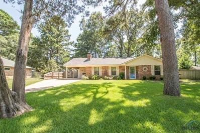 216 Grass Knoll, Hideaway, TX 75771 - #: 10112529