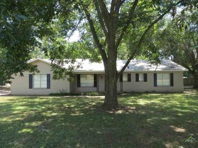830 E McDonald, Mineola, TX 75773 - #: 10112767