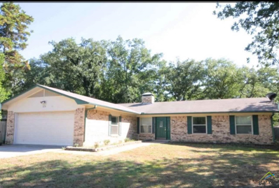 324 Rustic Rd., Hideaway, TX 75771 - #: 10112769