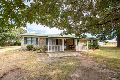 354 County Road 1540, Alba, TX 75410 - #: 10112788