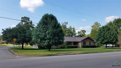 801 Richardson Drive, Henderson, TX 75654 - #: 10112809