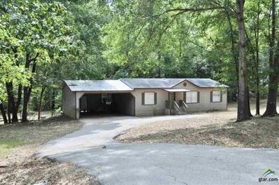 17211 County Road 230, Arp, TX 75750 - #: 10112897