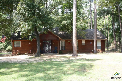 54 King Larry Circle, Scroggins, TX 75480 - #: 10113019