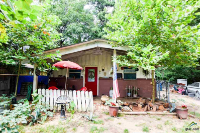 803 County Line, Troup, TX 75789 - #: 10113098