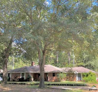 215 Bent Horseshoe Ln, Holly Lake Ranch, TX 75765 - #: 10113139