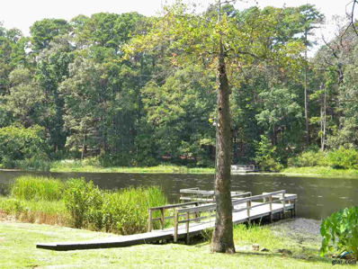 832 Clearwater Trail, Holly Lake Ranch, TX 75765 - #: 10113311