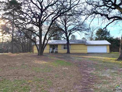 309 Kings Country Blvd, Scroggins, TX 75480 - #: 10113685