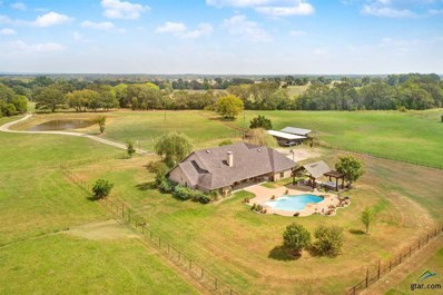 906 Vz County Road 1703, Grand Saline, TX 75140 - #: 10113736
