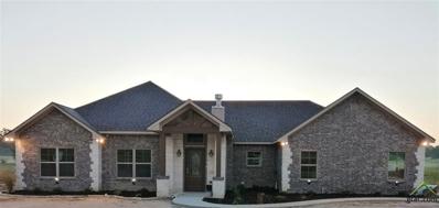321 County Road 1610, Alba, TX 75410 - #: 10113840