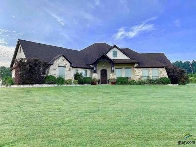4100 Cabernet Place, Tyler, TX 75703 - #: 10113857