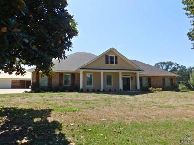711 Hillcrest, Hughes Springs, TX 75656 - #: 10114070