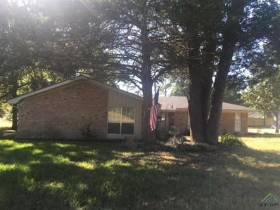 820 E McDonald St, Mineola, TX 75773 - #: 10114518