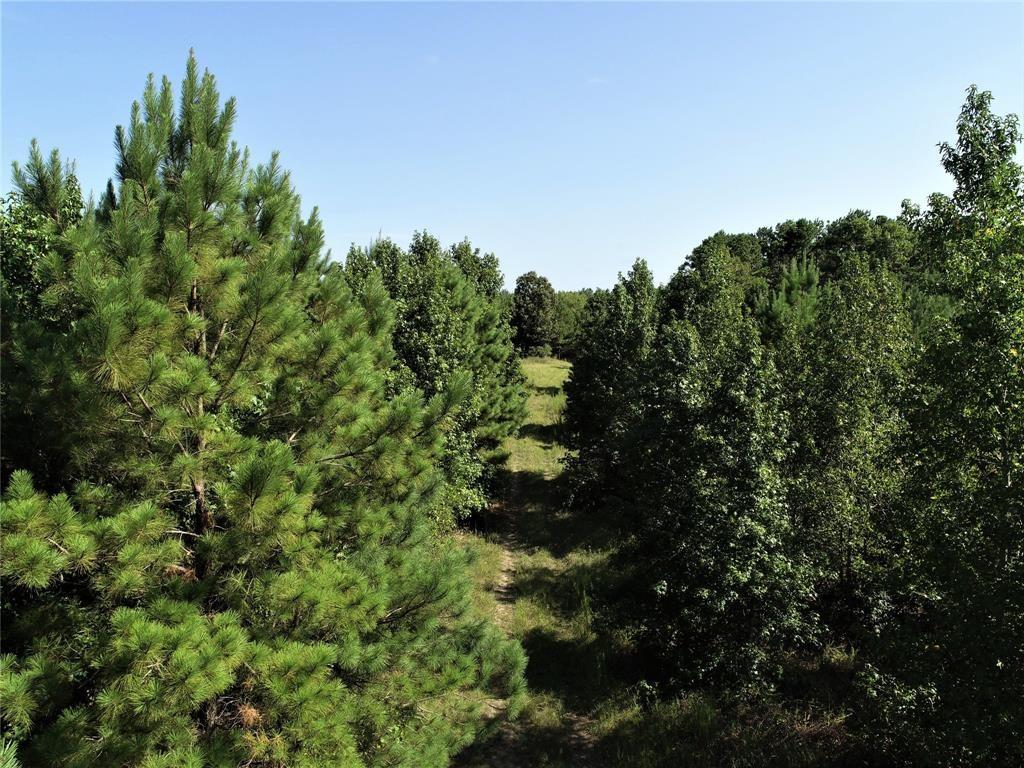 NA  Groveton Flat Prairie Road, 42