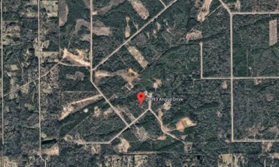 21093 Angus, Cleveland, TX 77328 - MLS#: 10000401