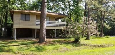 231 North Village Cove Loop, Livingston, TX 77351 - MLS#: 10192589