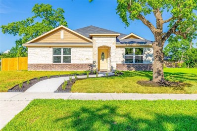14203 Mccadden Street, Houston, TX 77045 - MLS#: 10545657