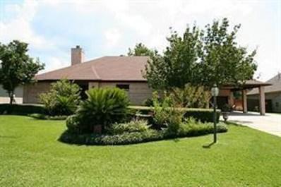 139 Wick Willow Drive, Montgomery, TX 77356 - #: 10942223