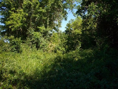 W 13th St To Private Lane, Brookshire, TX 77423 - MLS#: 11092724