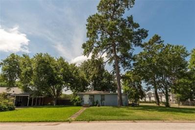 1753 Du Barry Lane, Houston, TX 77018 - #: 11541909