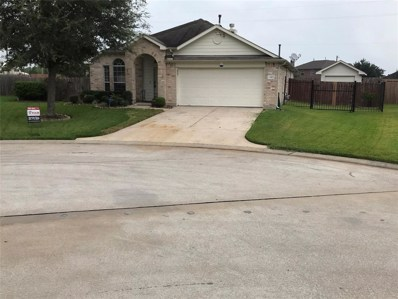 13903 Cotton Meadows, Houston, TX 77047 - MLS#: 11800058