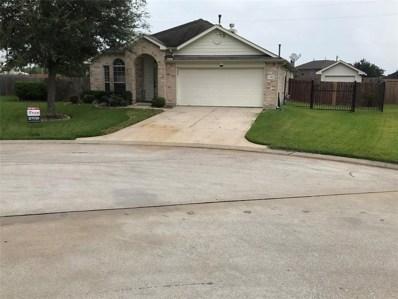 13903 Cotton Meadows Lane, Houston, TX 77047 - MLS#: 11800058