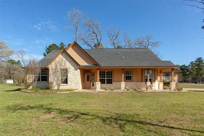 24943 Lake Forest Blvd, Magnolia, TX 77447 - MLS#: 12576749