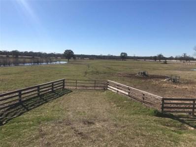 30161 High Spirit Ranch Ranch, Hempstead, TX 77445 - #: 13367529