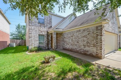 19546 Dawn Canyon, Houston, TX 77084 - MLS#: 14067409