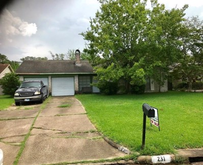 231 Holyhead Drive, Houston, TX 77015 - MLS#: 14830539