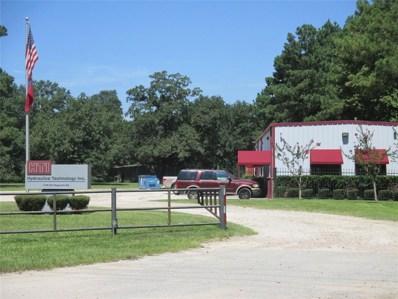 1100 Magnolia, Conroe, TX 77304 - #: 15241841