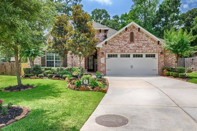 118 Forest Elk Place, Montgomery, TX 77316 - #: 16092493