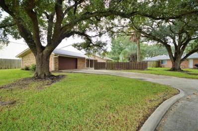 1307 Basilan Lane, Nassau Bay, TX 77058 - MLS#: 17167370
