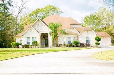 19275 Serpenteer Drive, Porter, TX 77365 - #: 17339949