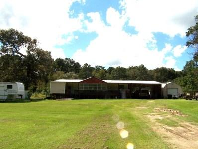 40721 Sandy Hill, Montgomery, TX 77316 - MLS#: 17410963