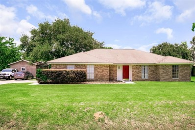 1011 Belton Lane, Anahuac, TX 77514 - MLS#: 17842921