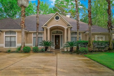 28 Waterberry Way, Montgomery, TX 77356 - #: 18682868