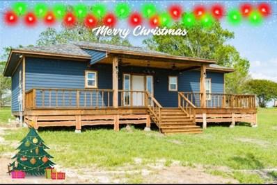 191 Crestmont Drive, Point Blank, TX 77364 - MLS#: 19533203