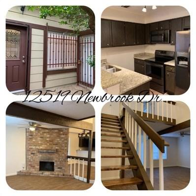 12519 Newbrook Drive, Houston, TX 77072 - #: 20108439