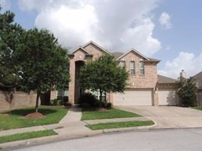 14103 Covenant Springs Court, Houston, TX 77044 - #: 20111459