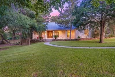 217 E Blue Heron Drive, Montgomery, TX 77316 - MLS#: 20409226