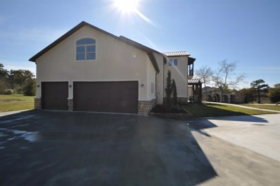 14702 Turquoise Court, Willis, TX 77378 - #: 21024520