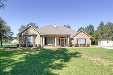 12234 E Border Oak Drive, Magnolia, TX 77354 - MLS#: 21090517
