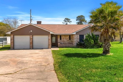 8815 Dowdell Road, Tomball, TX 77375 - #: 21678902