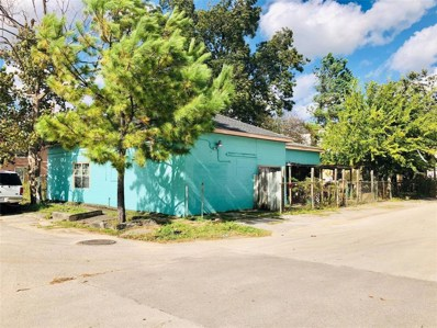 601 Middle Street, Houston, TX 77003 - #: 2265547