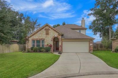 172 Knollbrook Circle, Montgomery, TX 77316 - MLS#: 24074430