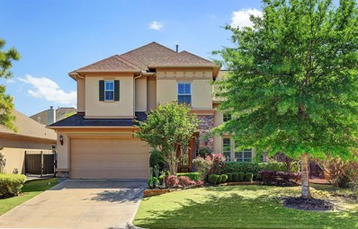 11207 French Oak, Houston, TX 77082 - MLS#: 24541784